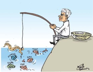 cartoon (4)