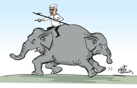 cartoonpic (1)