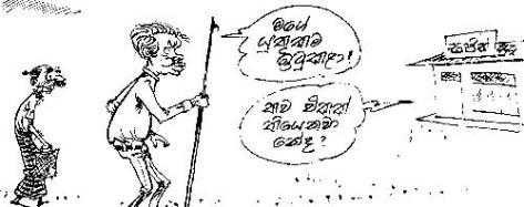 14-p-5-Cartoon
