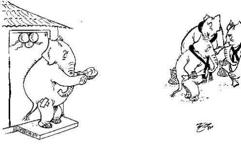 14-page4-cartoon-