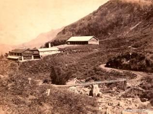 A TEA PLANTATION AT DELTA PUNLAWA. CEYLON 1860