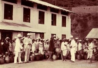 Surveyors at a Tea estate.