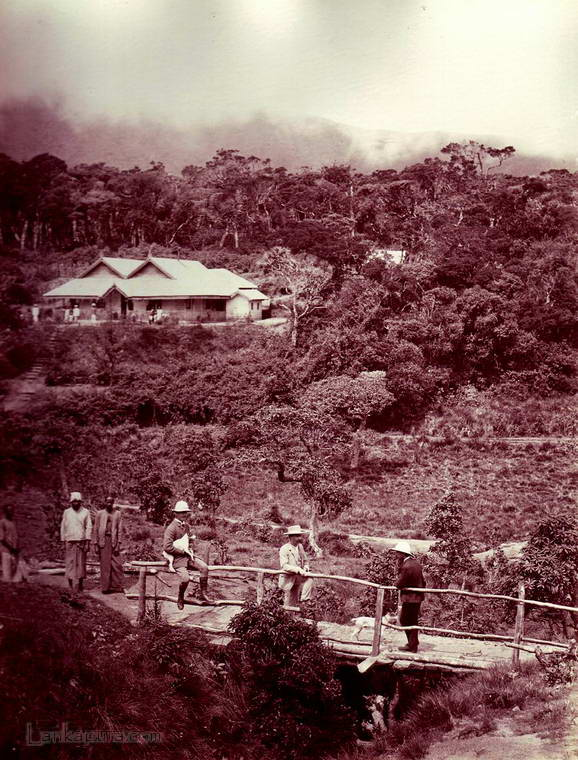 A Rare photo collection of Old Sri Lanka 2 – D'LIVE